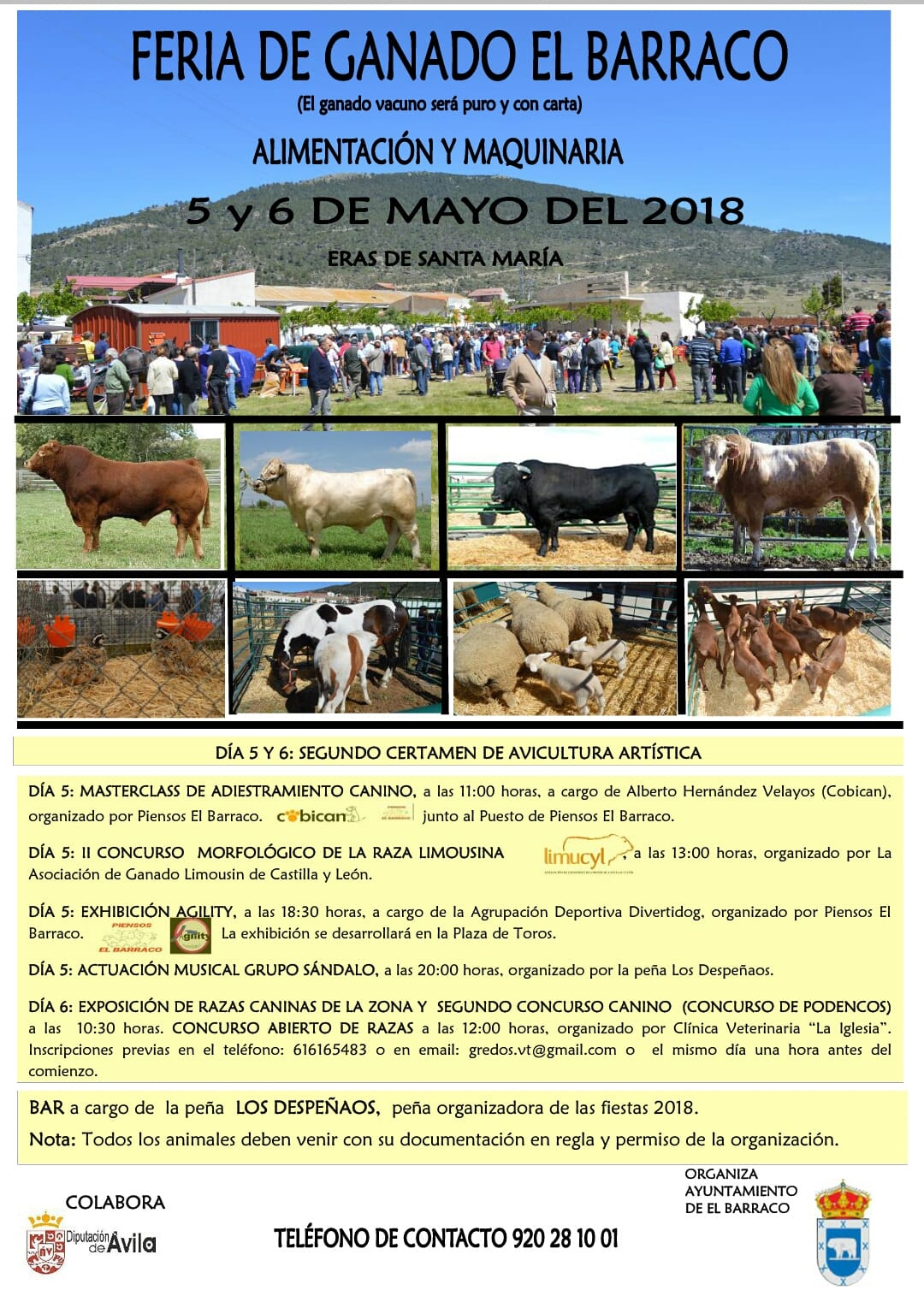FERIA EL BARRACO 2018
